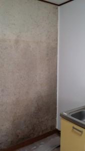 キッチン壁 (1)